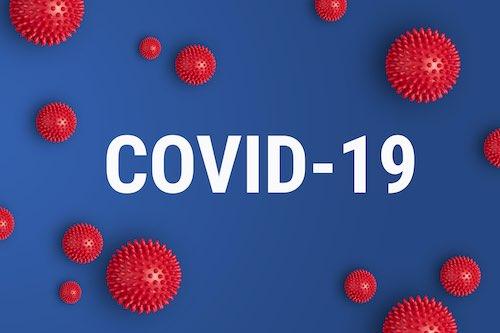 Pets and Coronavirus